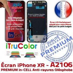 LCD Liquides sur A2106 Châssis inCELL in Apple SmartPhone Tone Affichage PREMIUM Cristaux 6,1 iPhone XR Vitre Écran True Retina