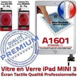 Filtre Bouton Vitre Réparation Blanc Mini3 Nappe A1601 iPad Tablette Fixation Caméra Tactile Ecran PREMIUM Verre Adhésif Oléophobe